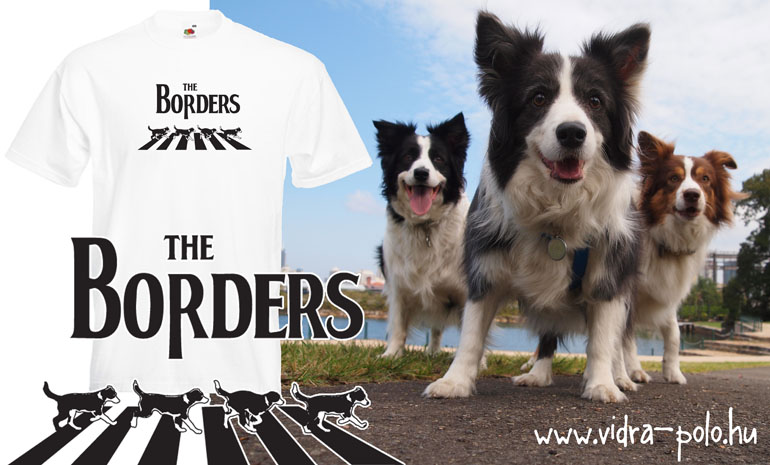 The Borders - Border collie